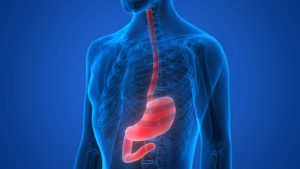 New Barrett's Esophagus Research May Assist in Diagnosis and Treatment
